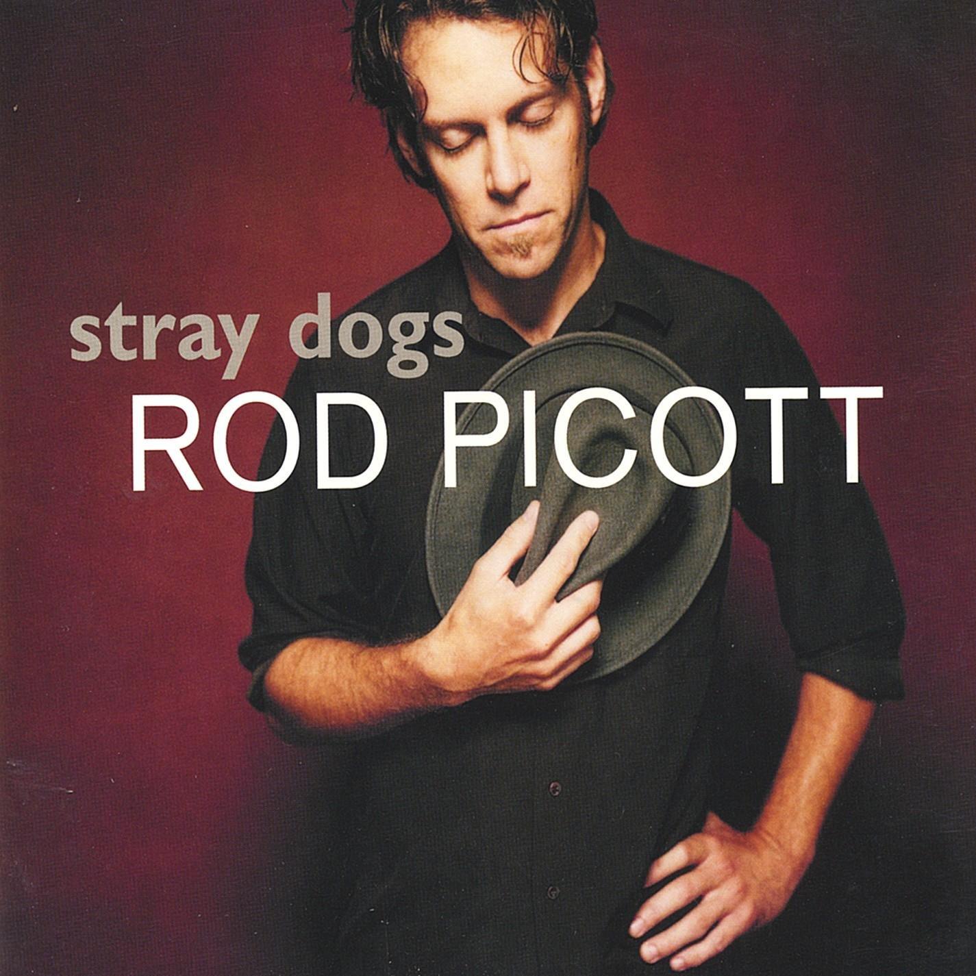 Rod Picott – Stray Dogs (2002) [FLAC]