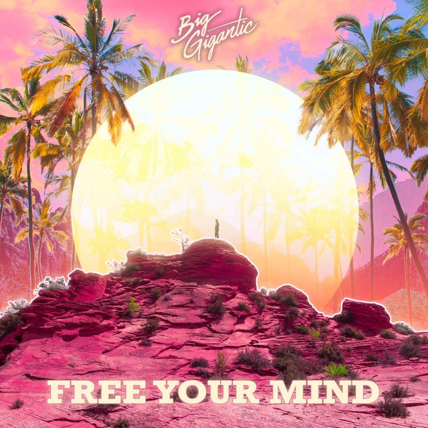 Big Gigantic – Free Your Mind (2020) [FLAC]