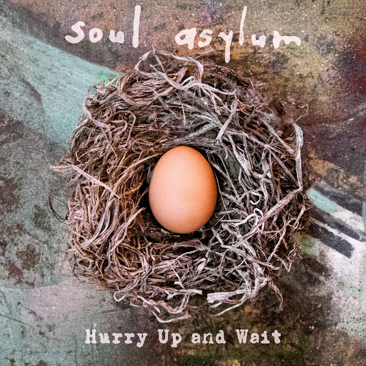 Soul Asylum - Hurry Up And Wait (2020) [FLAC] Download