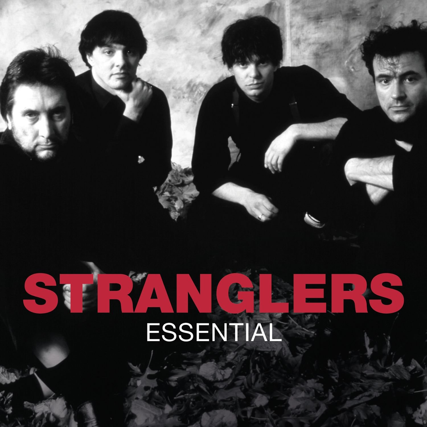The Stranglers - Essential (2011) [FLAC] Download
