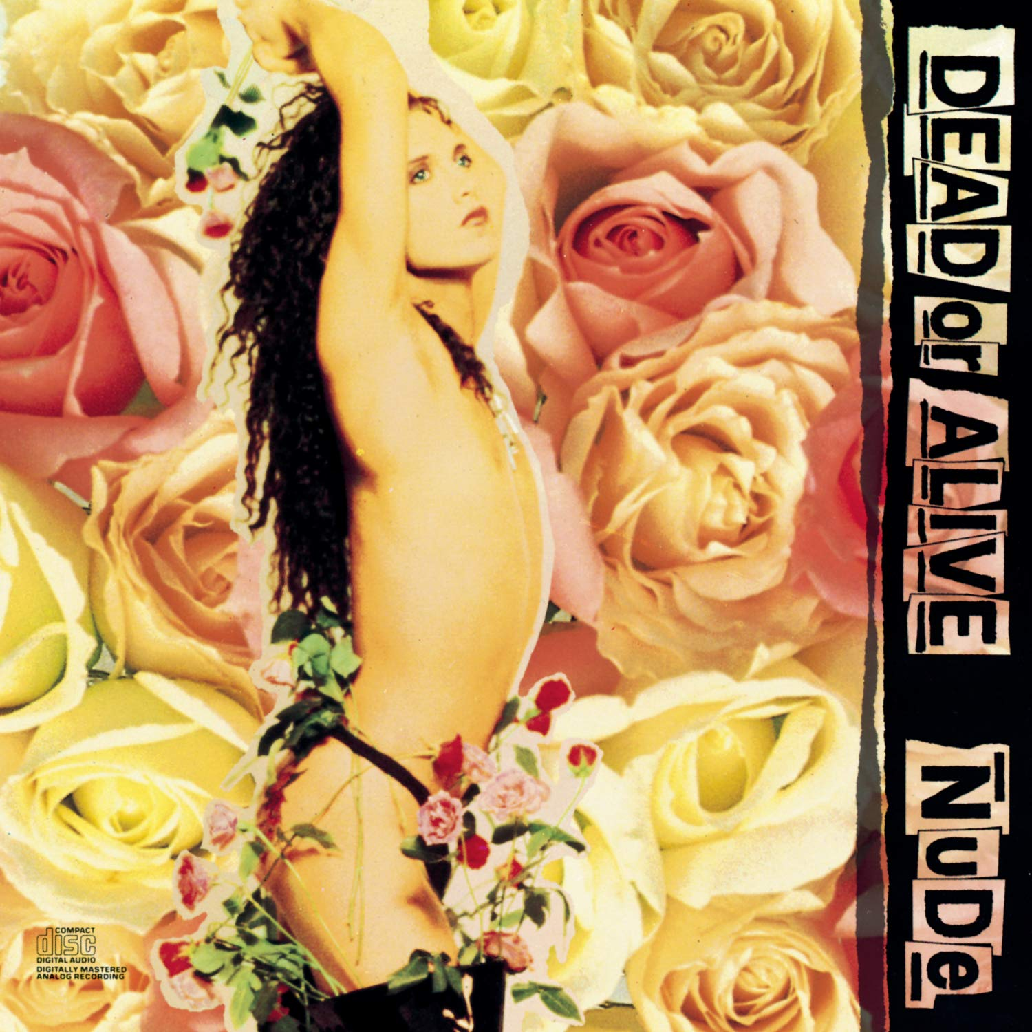 Dead Or Alive - Nude (1989) [FLAC] Download