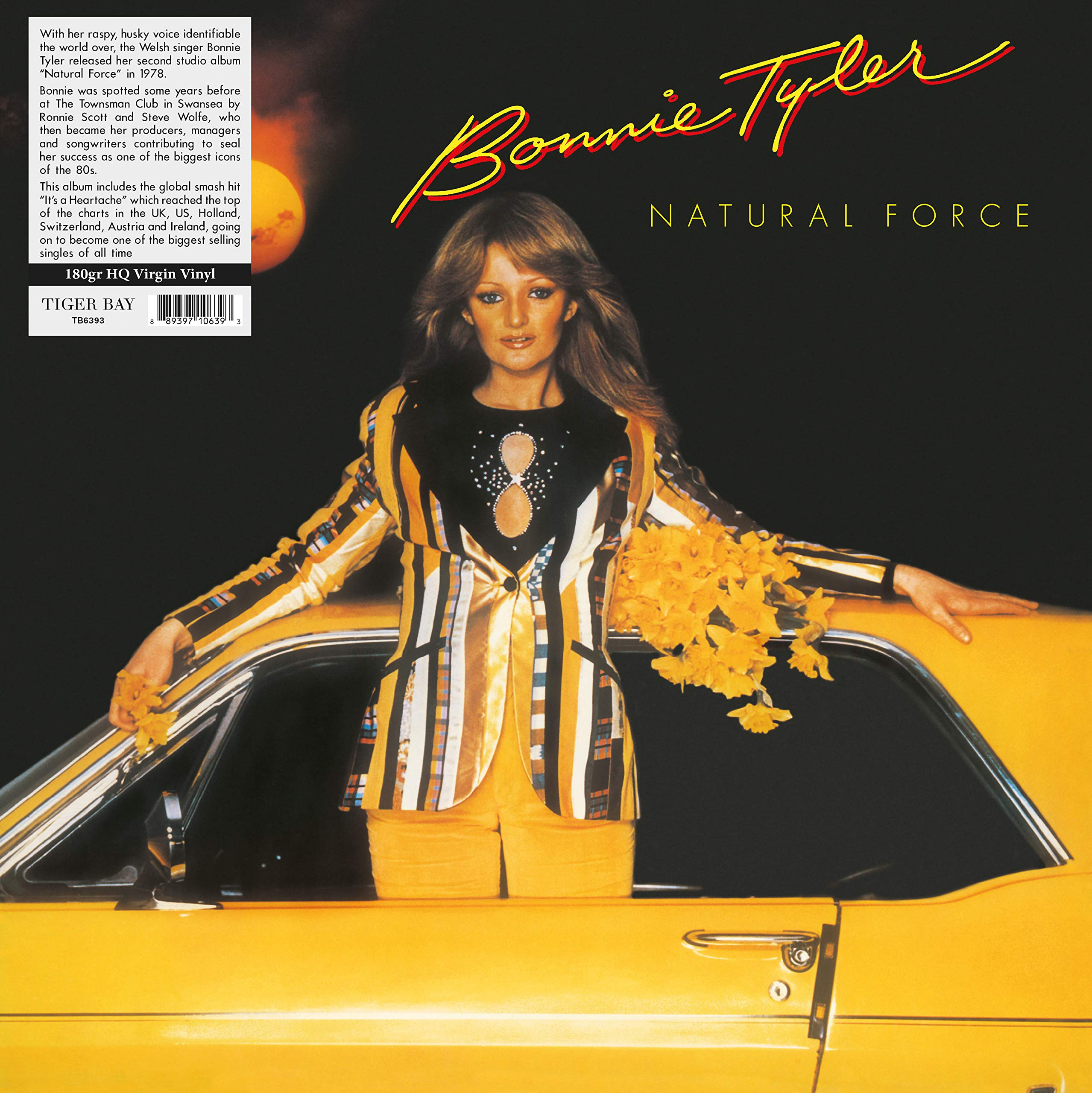 Bonnie Tyler - Natural Force (1978) [FLAC] Download