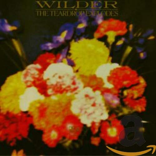 The Teardrop Explodes - Kilimanjaro / Wilder (2001) [FLAC] Download