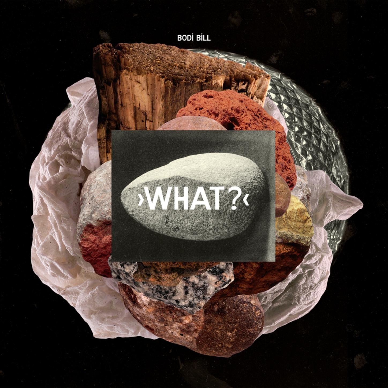 Bodi Bill – What? (2011) [FLAC]