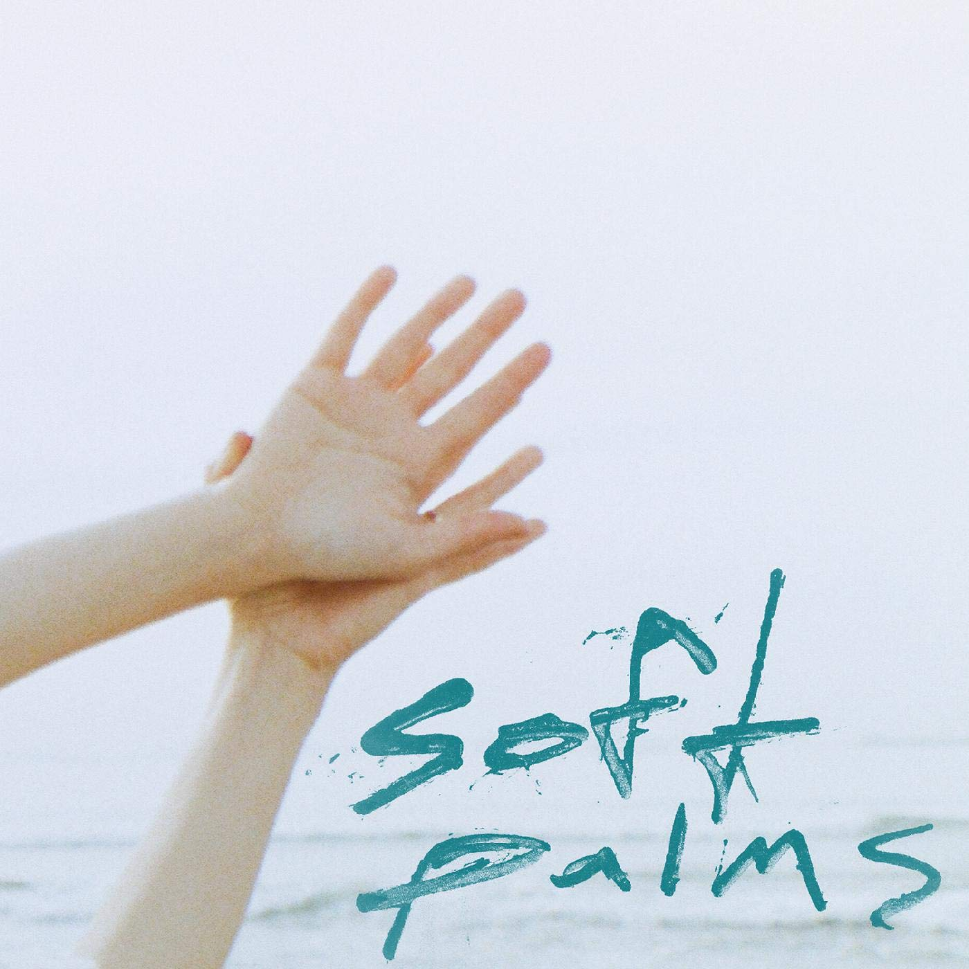 Soft Palms - Soft Palms (2020) [FLAC] Download