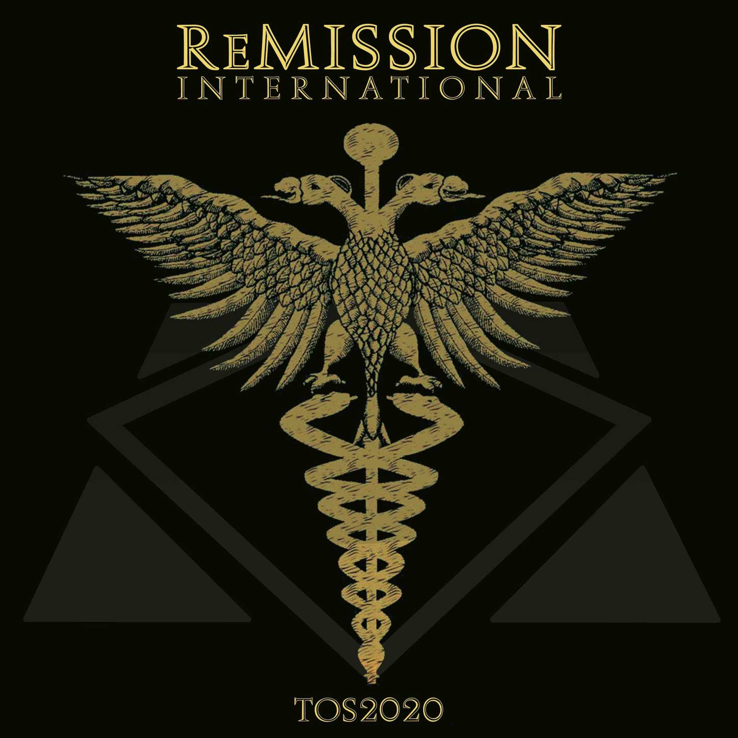 ReMission International – TOS2020 (2020) [FLAC]