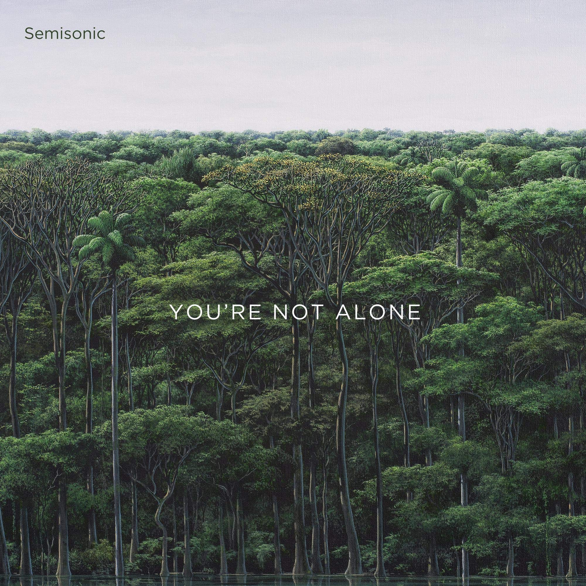 Semisonic – You're Not Alone (2020) [FLAC]