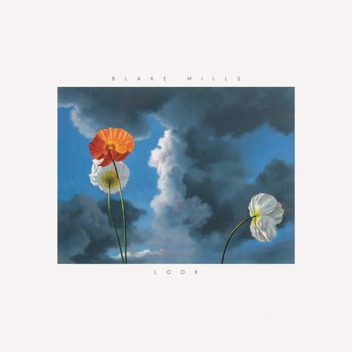 Blake Mills - Look (2018) [FLAC] Download