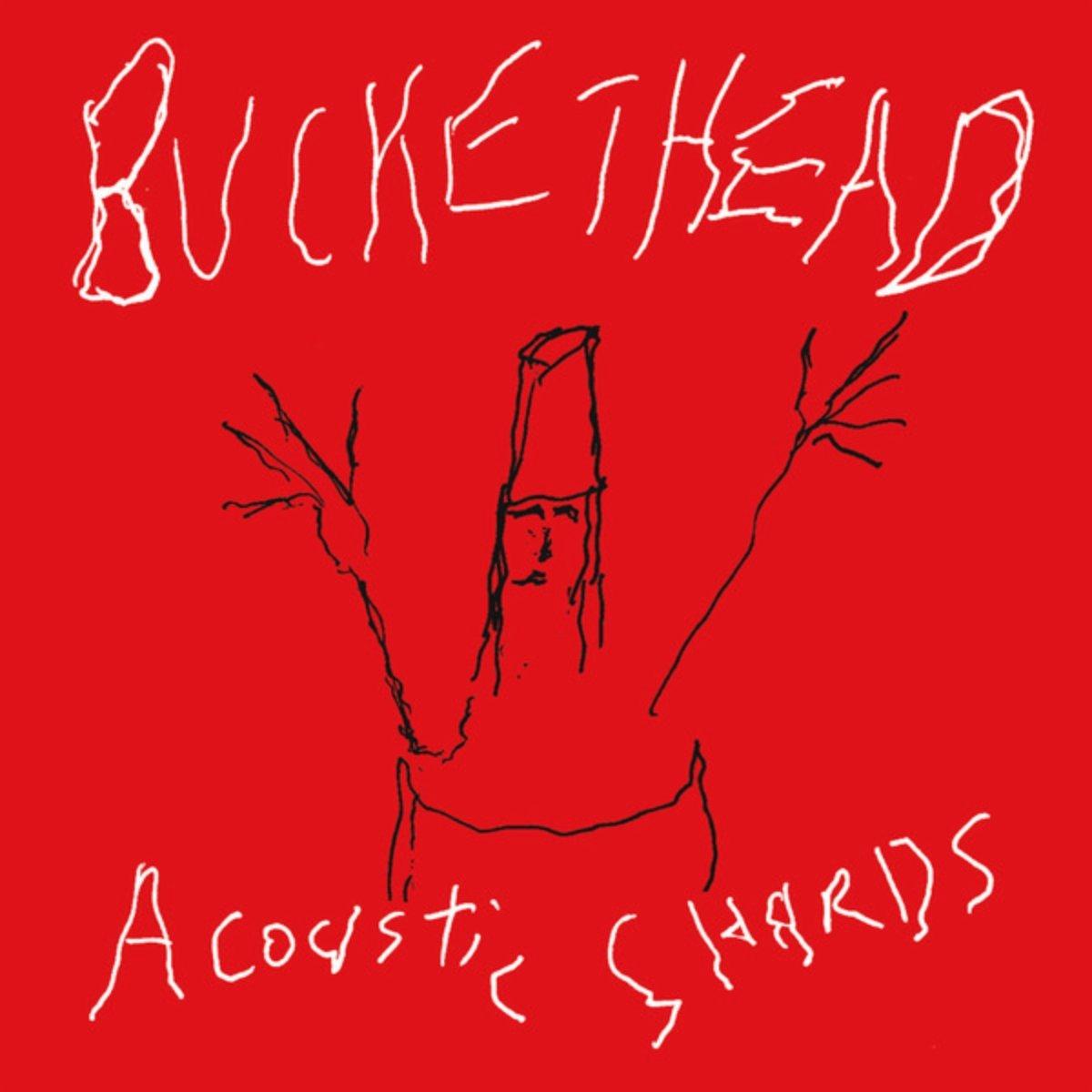 Buckethead – Acoustic Shards (2007) [FLAC]