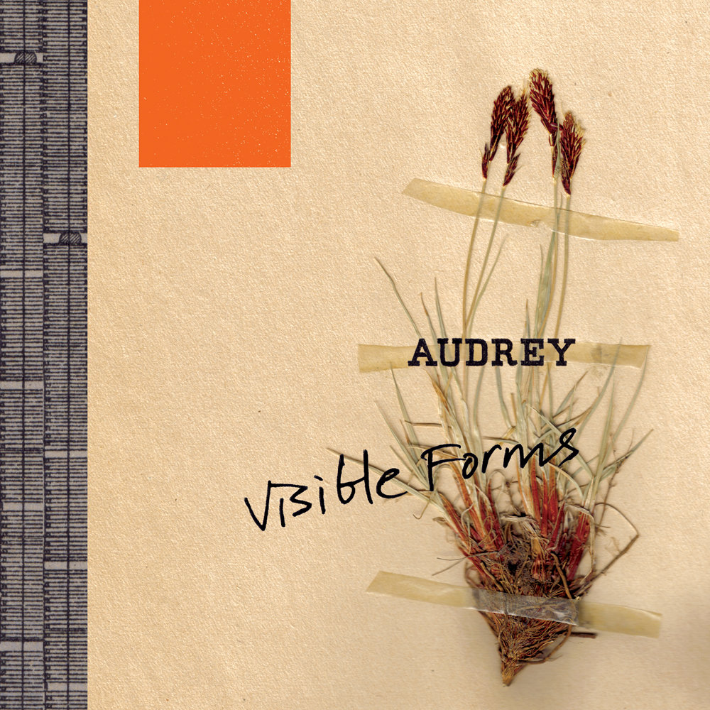 Audrey - Visible Forms (2006) [FLAC] Download