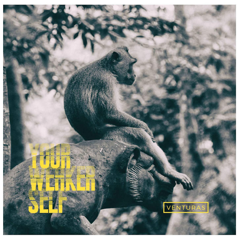Venturas - Your Weaker Self (2021) [FLAC] Download