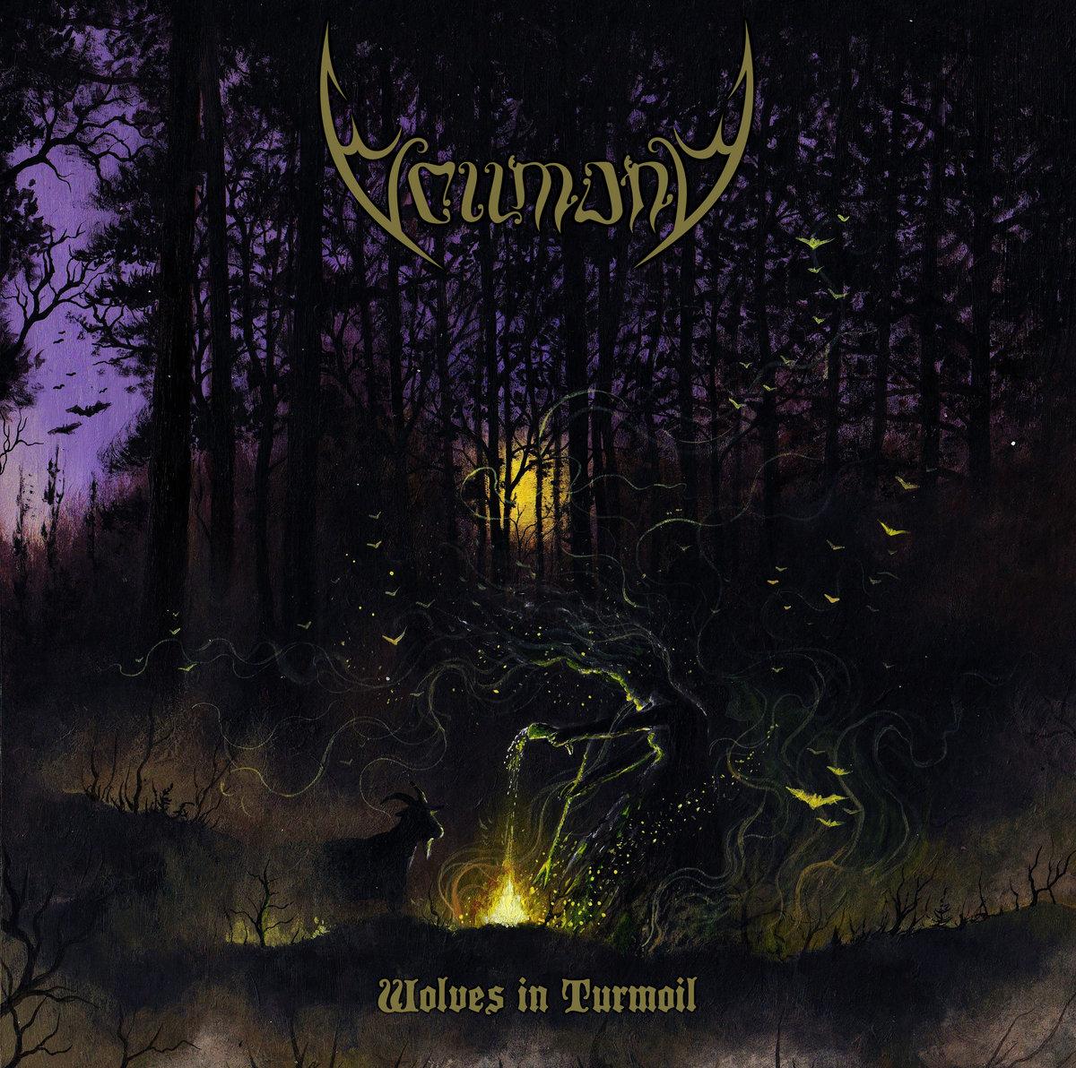 Vollmond - Wolves in Turmoil (2021) [FLAC] Download