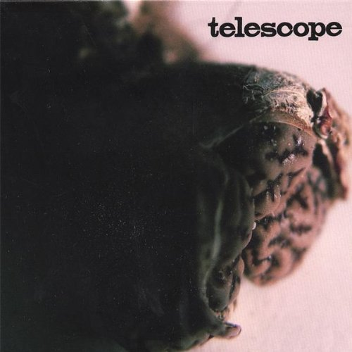 The Telescopes - The Telescopes (1992) [FLAC] Download