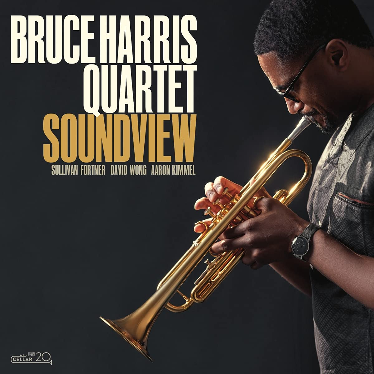 Bruce Harris - Soundview (2021) [FLAC] Download