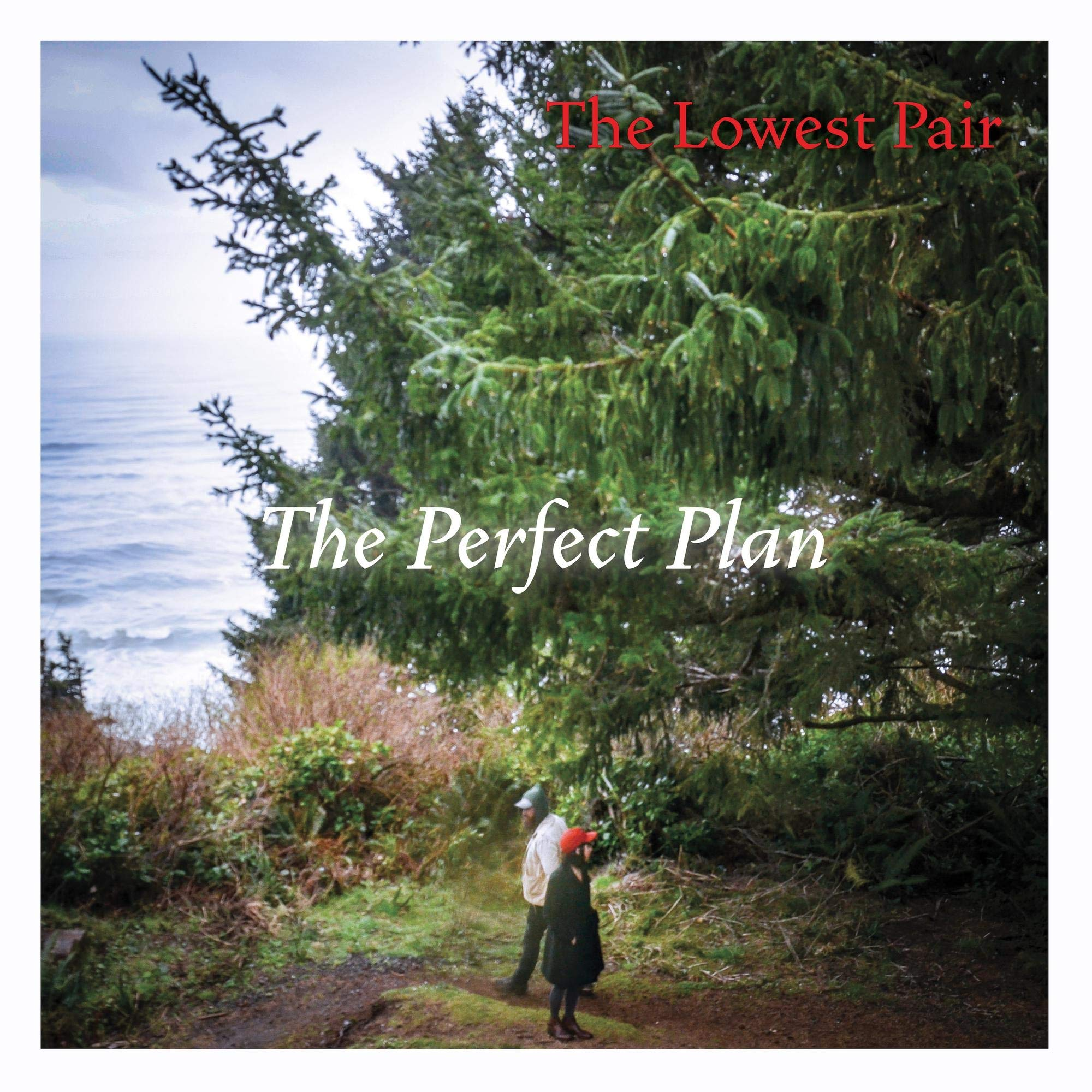 The Lowest Pair - The Perfect Plan (2020) [FLAC] Download